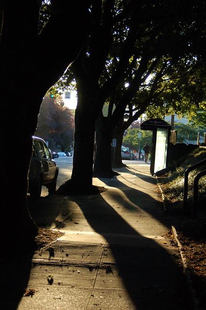090907_looking_east_sun_sidewalk