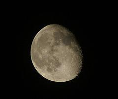 Moon Shots.