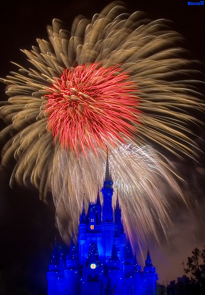Bricker Walt Disney World BIRTHDAY Wishes Explored