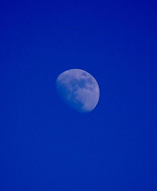 Lasso the Moon   Flick...