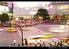 Night View @ shibuya