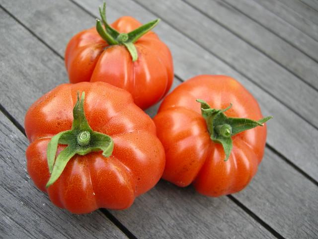 Flickr photo sharing - Comment congeler des tomates du jardin ...