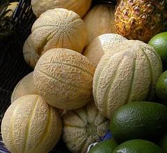 cantaloupe, citrus, honeydew, produce, fruit, food, winter squash, muskmelon, citron, melon,