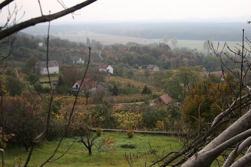 fall hungary hegy ungarn 2010 kirándulás hongrie domb ősz október túra hétvége séta őszi domok