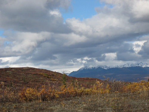 mountains, snow, clouds, glacier, red, bush… IMG_0434.JPG