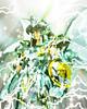 [Imagens]Shiryu God 5136924654_0fa0f27312_t