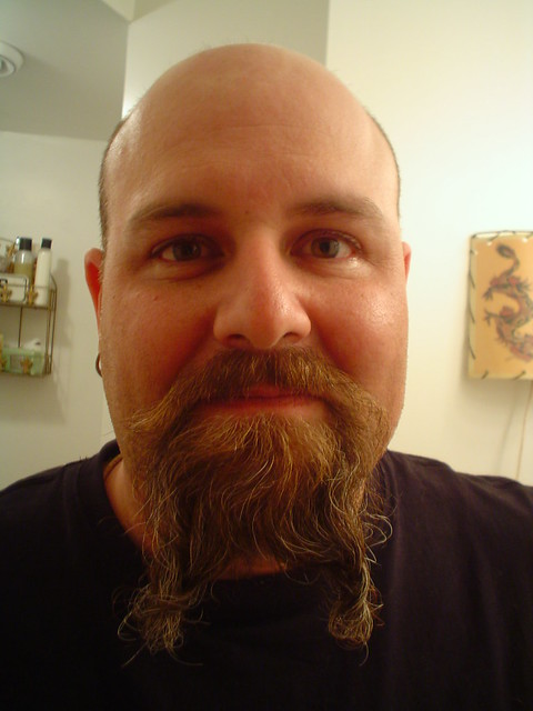 1045512379 f558509a8d z jpgViking Beard Braid