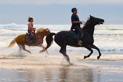 Female equestrian Susanne Nuckols and Male Equestrian on Morro Strand. By: Mike Baird