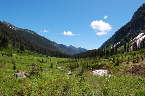 Spider Meadow from North