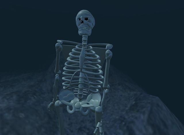 Cool skeletin avatar by Tree Kyomoon   Testing stuff in ...