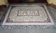 carpet(0.0), floor(1.0), art(1.0), mosaic(1.0), granite(1.0), road surface(1.0), flooring(1.0),