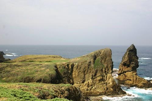 Endangered short-tailed albatross (Phoebastria albatrus) habitat, Mukojima Island, Japan