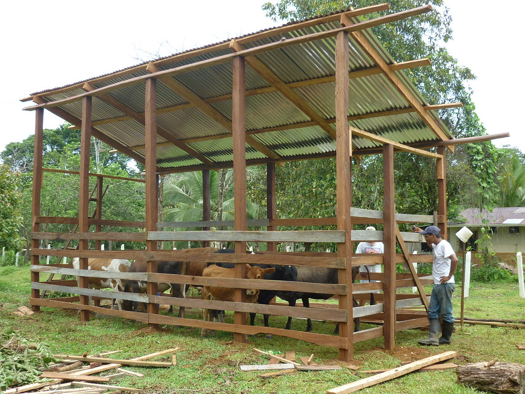 Side view of the newly constructed livestock enclosure