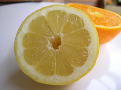 lemon-lime(0.0), plant(0.0), lemon juice(0.0), produce(0.0), grapefruit(1.0), citrus(1.0), orange(1.0), lemon(1.0), meyer lemon(1.0), fruit(1.0), food(1.0), tangelo(1.0), sweet lemon(1.0), bitter orange(1.0), citron(1.0), juice(1.0), lime(1.0),