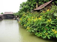 順德長鹿渡假村 2007
