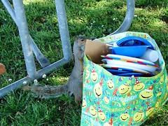 backyard(0.0), outdoor play equipment(0.0), play(0.0), swing(0.0), hammock(0.0), playground(0.0), art(1.0), grass(1.0), green(1.0), lawn(1.0), spring(1.0), picnic(1.0), blue(1.0),
