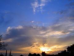 Sunrises & Sunsets in the Old Pueblo