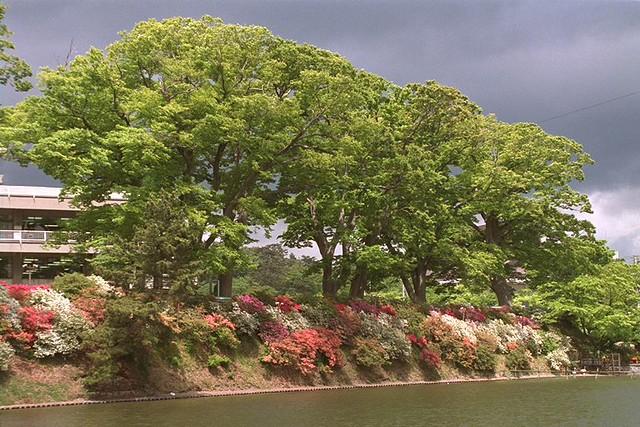 Akita town, castle moat