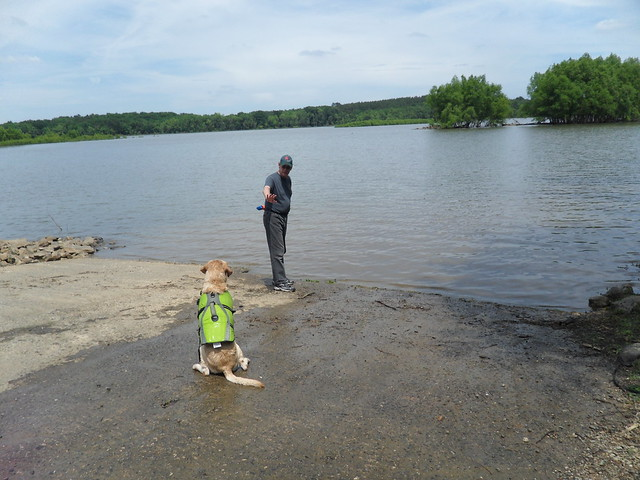 Dogs love Virginia State Parks