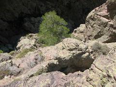 Trace cairnée de Tana di l'Orsu : l'arrivée sur la rampe du pas exposé