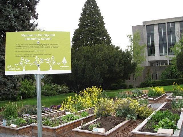 COV Community Garden