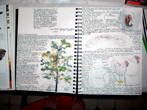 Tree, Roosters, Seahorse, Jelly Fish