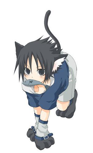 1238936783_39fea038b7.jpg  Sasuke As A Cat