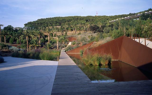 Jard n bot nico de barcelona jard n bot nico de for Jardin botanico montjuic