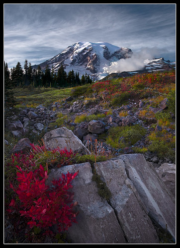 Rainier Fall Bouquet