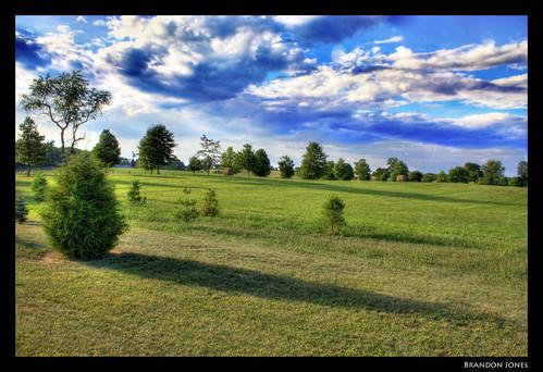 trees shadow sky grass clouds high bush dynamic farm range hdr photomatix