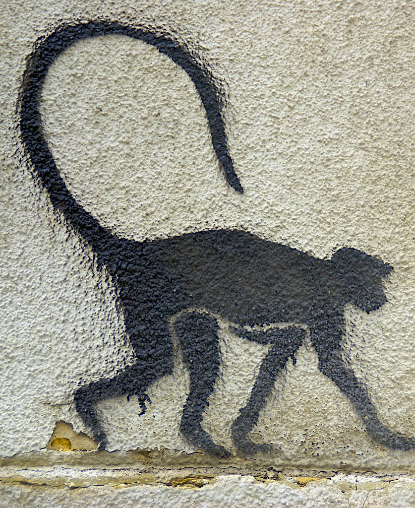 Monkey wall stencil images home wall decoration ideas monkey stencil art vienna 2007 a photo on flickriver monkey stencil art vienna 2007 amipublicfo images amipublicfo Gallery