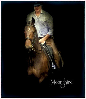 GMHA Dressage Days: Moonshine