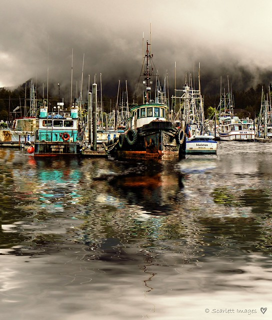 Sitka Harbor on a cloudy day