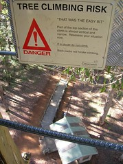 Sign warning of the dangers of tree climbing. Far below you can see the ground.
