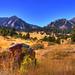 Boulder in Boulder, Colorado by Thad Roan - Bridgepix