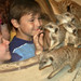 Small photo of Aquar.meerkats&kids