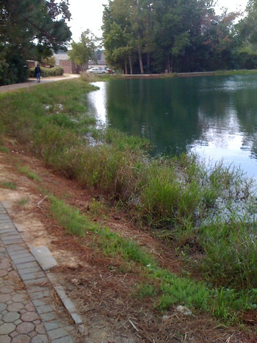 bikepath path lakeside tecol biol1210fa10