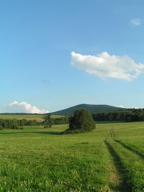South Czech landscape