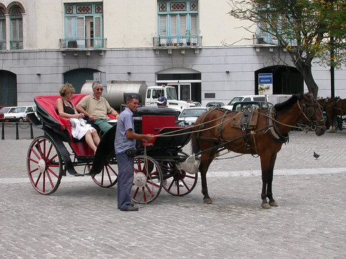 Take a horse carriage ride at old Havana - Things to do in Havana