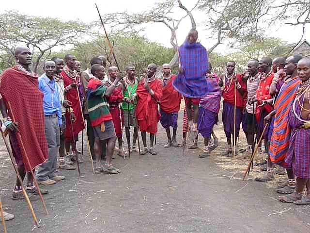 This Lion Guardian is jumping to celebrate the Games. In the Maasai culture, it is traditional for men to engage in this competitive jumping activity, which is used to show the murrans, or warriors', stamina and strength...and to impress the girls! This Lion Guardian is showing how high he can jump and having a great time in the process.   Learn more about the joint Panthera/Living with Lions Lion Guardians program at www.panthera.org/programs/lion/lion-guardians  © Kylie McQualter
