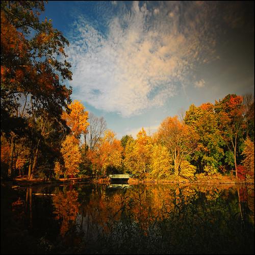 autumn fall october bronx autumnleaves d200 outono vanny vannie bronxnyc wanilton vancourtlandtgolfcourse