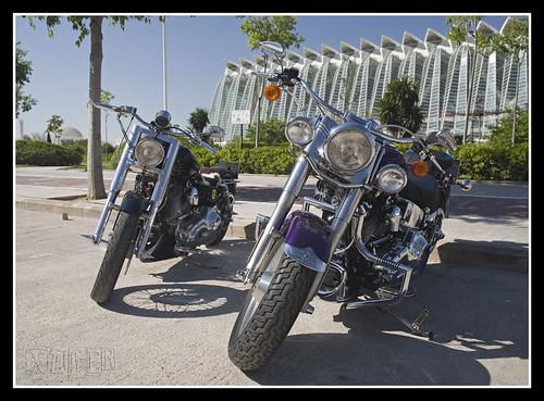 Harley-Davidson-29