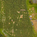 Aerial Photography of Maize maze Crowhurst Park Sussex 2007