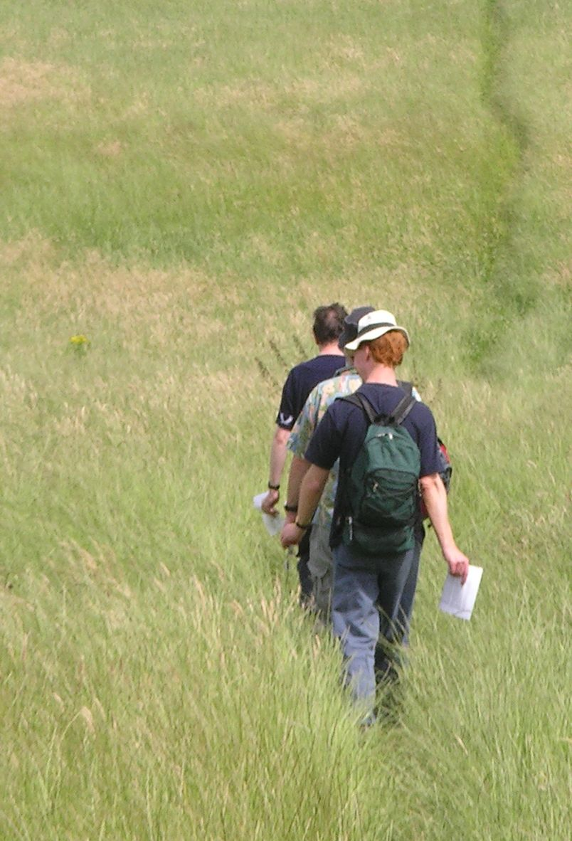 Book 3, Walk 39, Amberley to Pulborough Walk-checking through the West Sussex savanna, 14 July '07