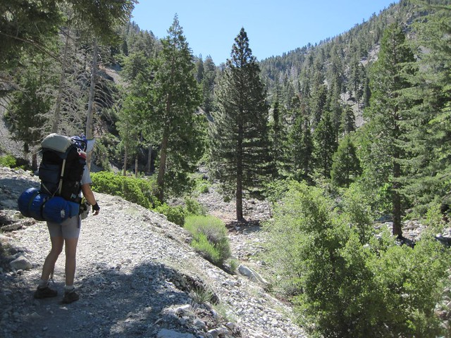 Looking up the Icehouse Canyon Trail toward the saddle