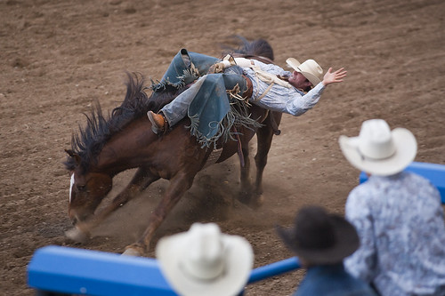 Cody Nite Rodeo - Bronc Riding