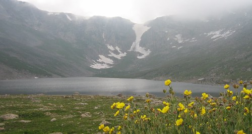 me_lake_cirque_flowers
