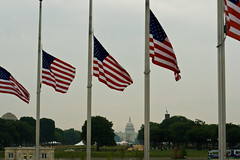 Capitol Building behind flags