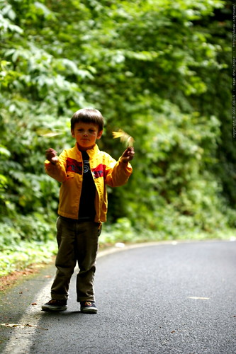 nick using leaves as puppets    MG 3116