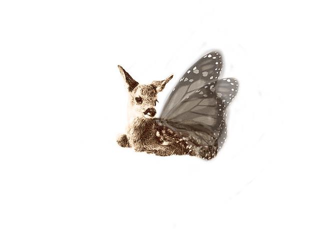 Fairytale Deer